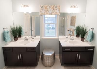 Meridian Owner's Bath.