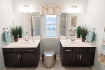 Meridian Owner's Bath. 2,820sf New Home in Tatamy, PA