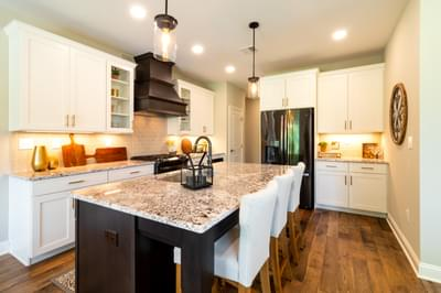 Vinecrest Kitchen. 4br New Home in Easton, PA